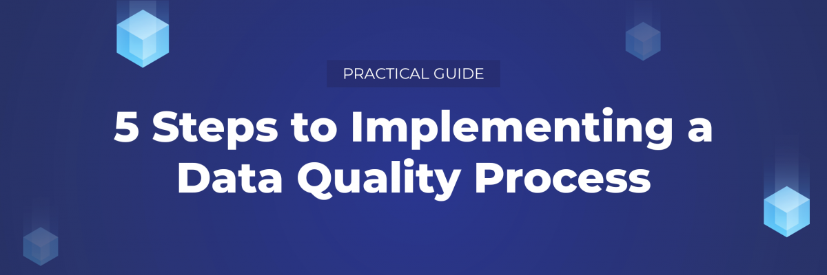 Your Data Quality process in 5 steps